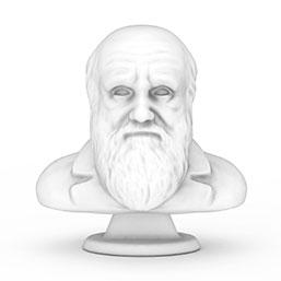 达尔文人头雕像模型