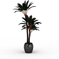 3D室内植物模型