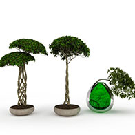 园林盆景3D模型
