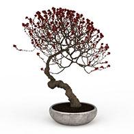 梅花盆栽3D模型