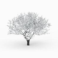 冬季落雪树3D模型