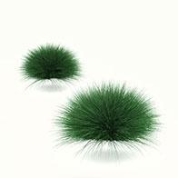 公园草坪3D模型