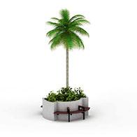 公园椰子树3D模型